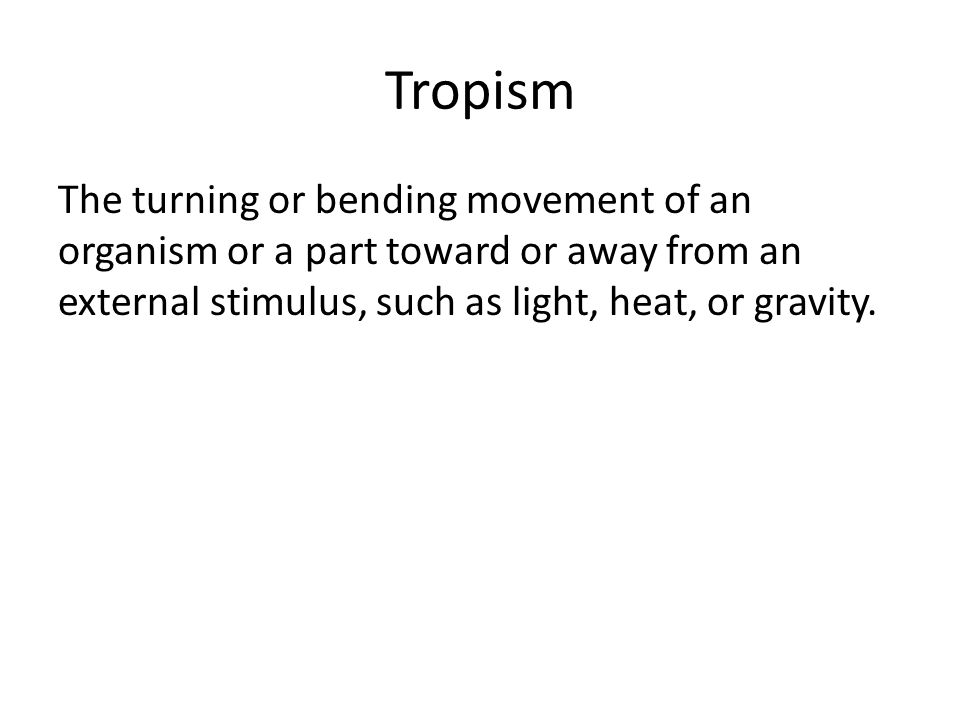 Tropism The turning or bending movement of an organism or a part toward or away from an external stimulus, such as light, heat, or gravity.