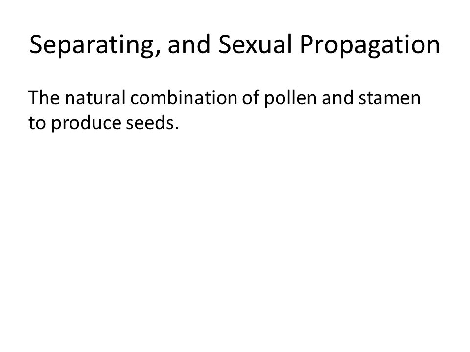 Separating, and Sexual Propagation The natural combination of pollen and stamen to produce seeds.