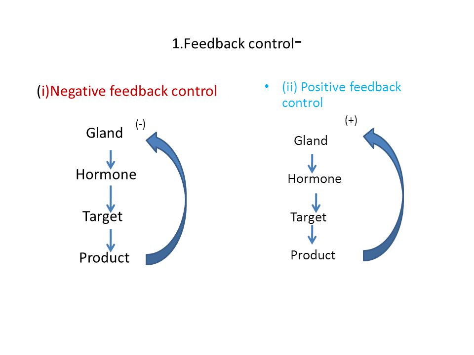 Depending upon the product involved,the feedback mechanism may be Regulation of hormone secretion Hormone - hormone feed back control Substrate hormone feed back control