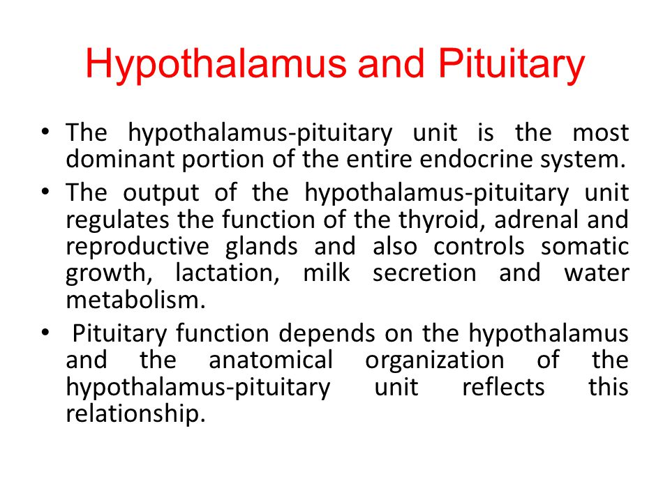 Hypothalamus and Pituitary The hypothalamus-pituitary unit is the most dominant portion of the entire endocrine system.