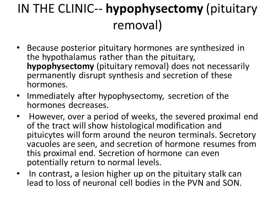 IN THE CLINIC-- hypophysectomy (pituitary removal) Because posterior pituitary hormones are synthesized in the hypothalamus rather than the pituitary, hypophysectomy (pituitary removal) does not necessarily permanently disrupt synthesis and secretion of these hormones.