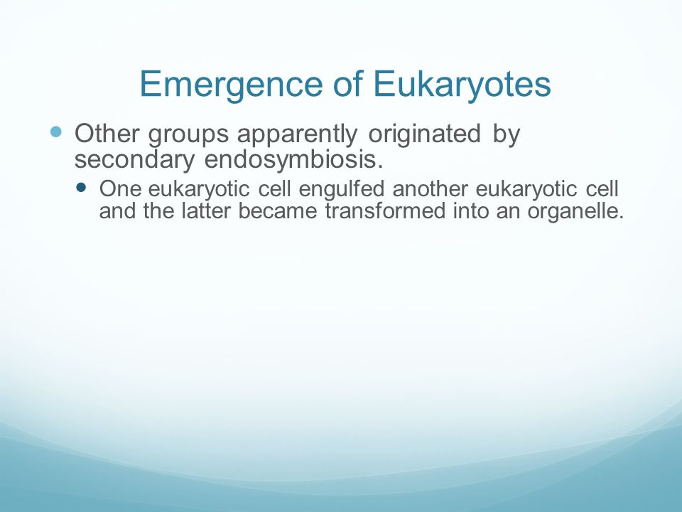Emergence of Eukaryotes Other groups apparently originated by secondary endosymbiosis. One eukaryotic cell engulfed another eukaryotic cell and the la