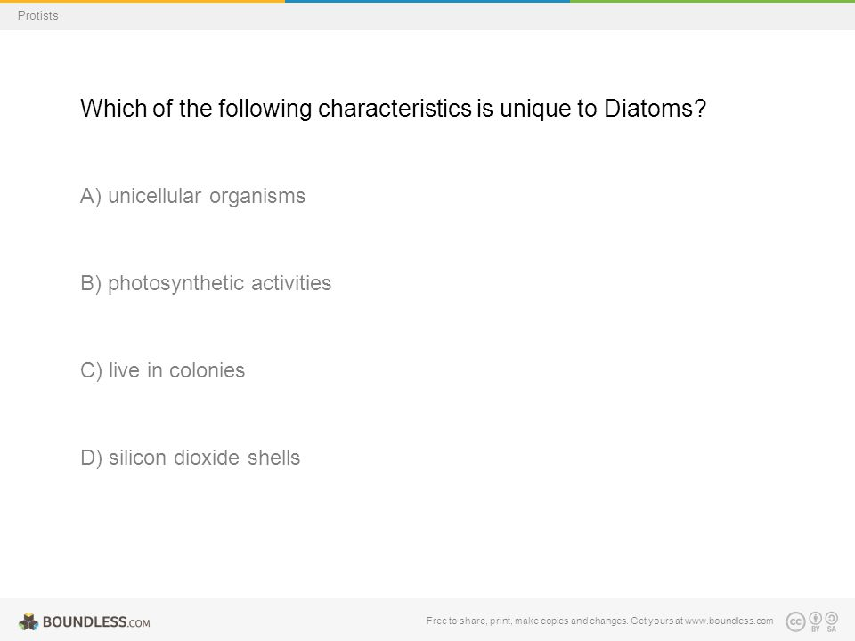 Free to share, print, make copies and changes. Get yours at www.boundless.com Protists Which of the following characteristics is unique to Diatoms? A)