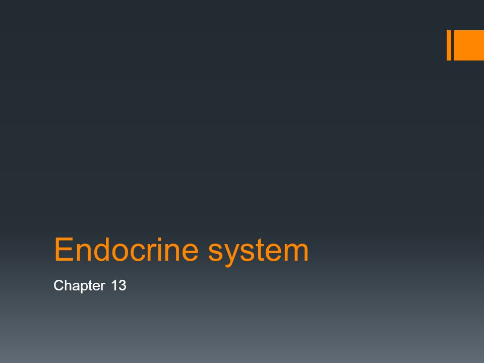 Endocrine system Chapter 13