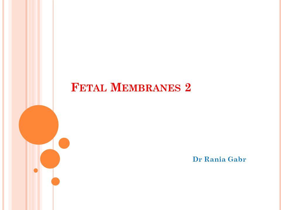 F ETAL M EMBRANES 2 Dr Rania Gabr