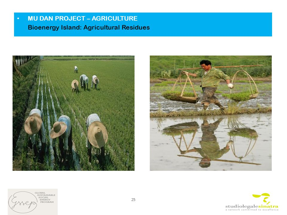 MU DAN PROJECT – AGRICULTURE Bioenergy Island: Agricultural Residues 25