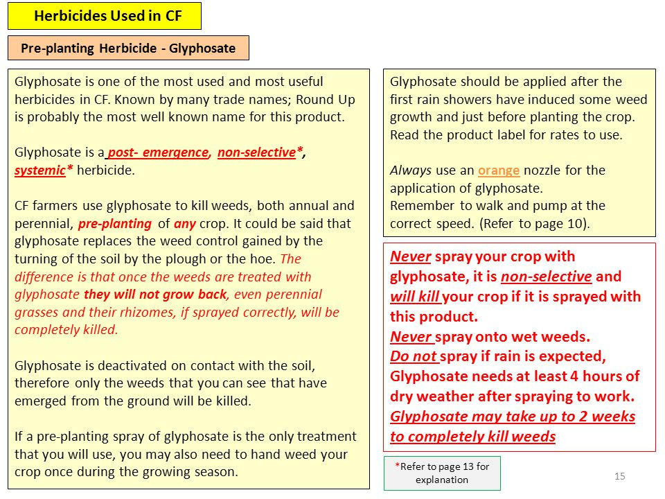 15 Herbicides Used in CF Glyphosate is one of the most used and most useful herbicides in CF.