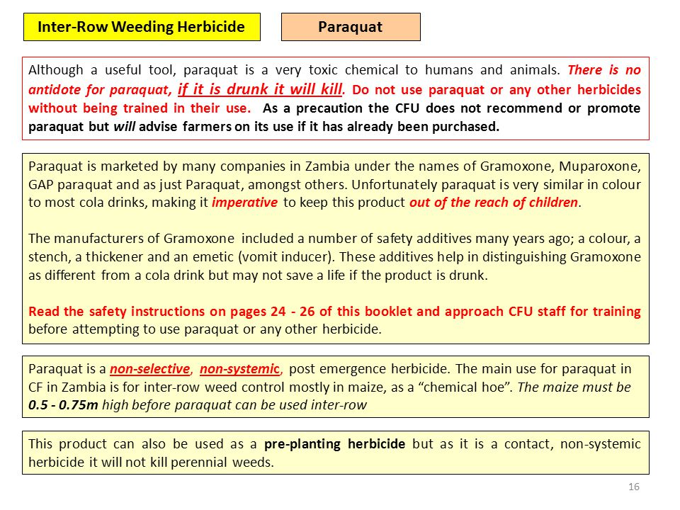 16 Inter-Row Weeding Herbicide Although a useful tool, paraquat is a very toxic chemical to humans and animals.