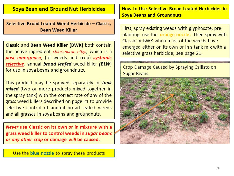 20 Selective Broad-Leafed Weed Herbicide – Classic, Bean Weed Killer Classic and Bean Weed Killer (BWK) both contain the active ingredient chlorimuron ethyl, which is a post emergence, (of weeds and crop) systemic selective, annual broad leafed weed killer (BLW) for use in soya beans and groundnuts.