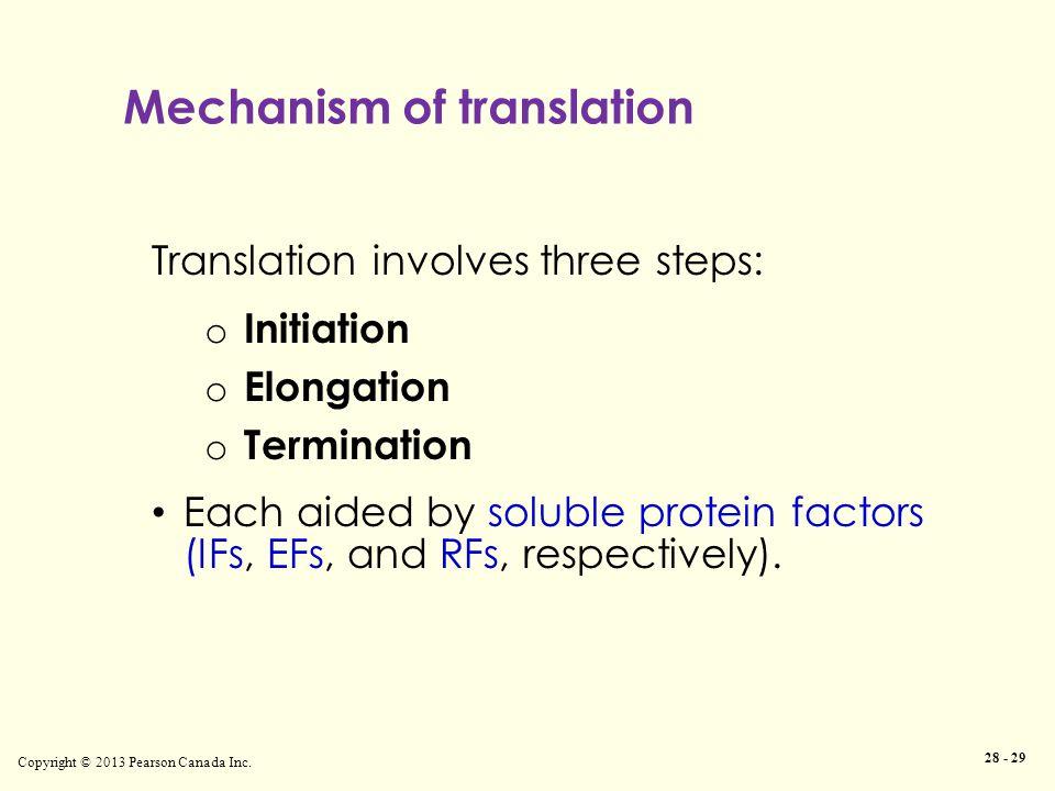 Mechanism of translation Copyright © 2013 Pearson Canada Inc. 28 - 29 Translation involves three steps: o Initiation o Elongation o Termination Each a
