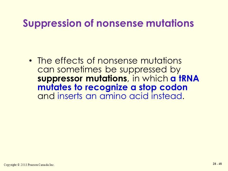 Suppression of nonsense mutations Copyright © 2013 Pearson Canada Inc.