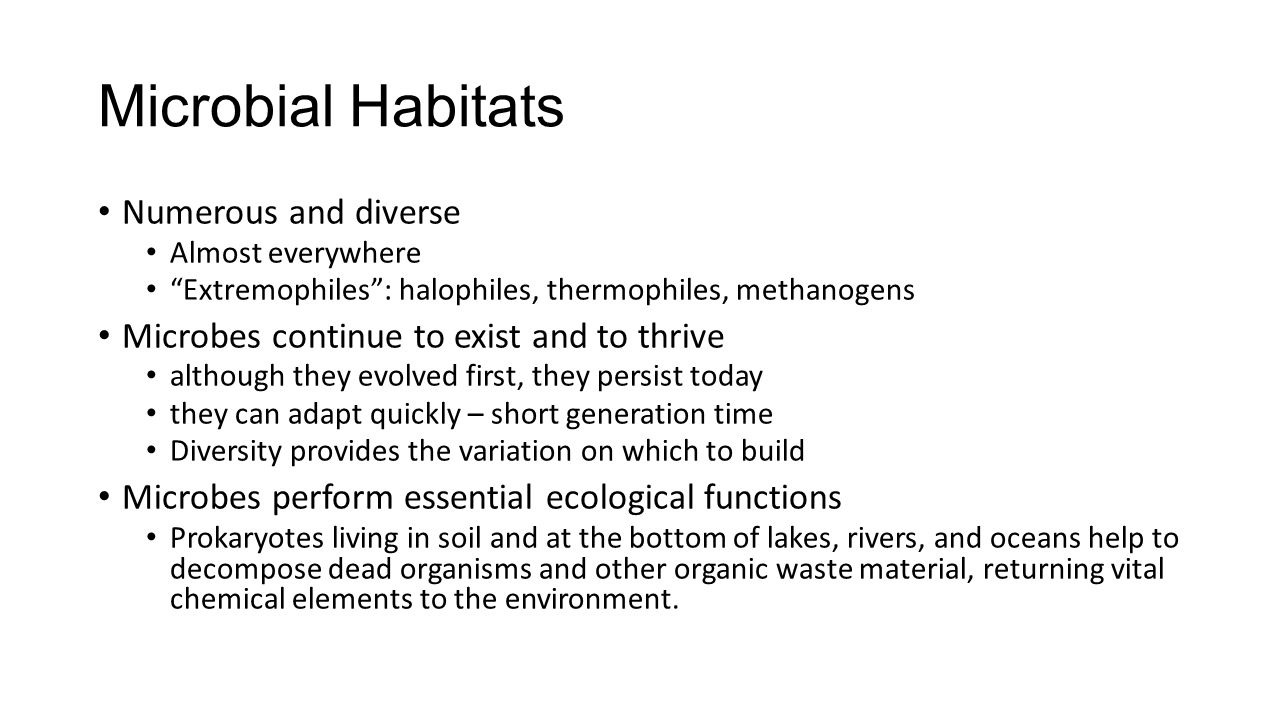 """Microbial Habitats Numerous and diverse Almost everywhere """"Extremophiles"""": halophiles, thermophiles, methanogens Microbes continue to exist and to thr"""
