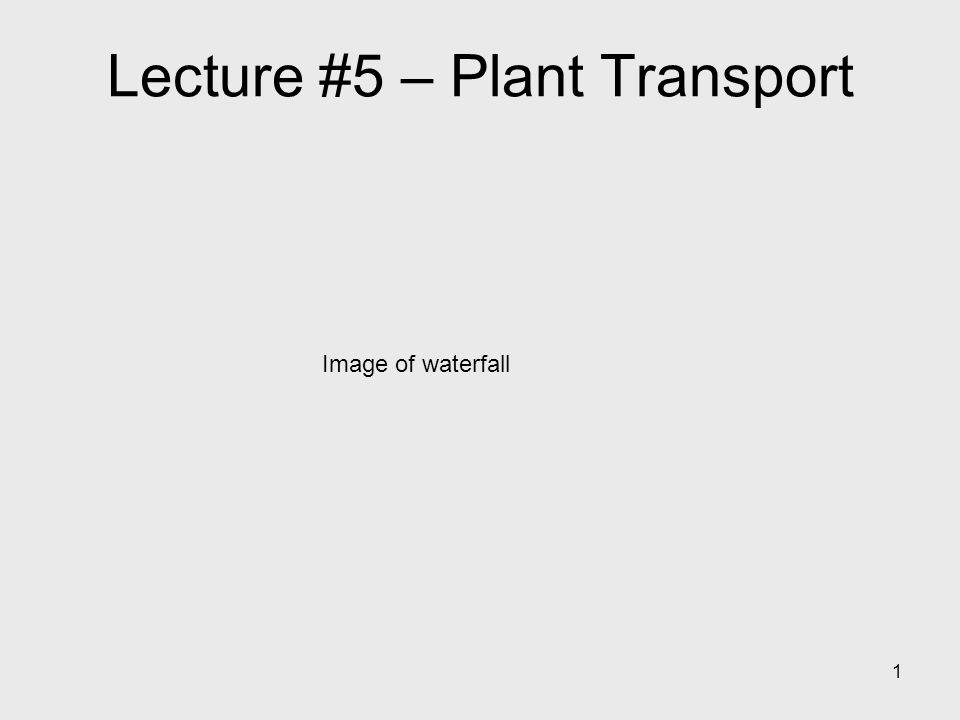 1 Lecture #5 – Plant Transport Image of waterfall