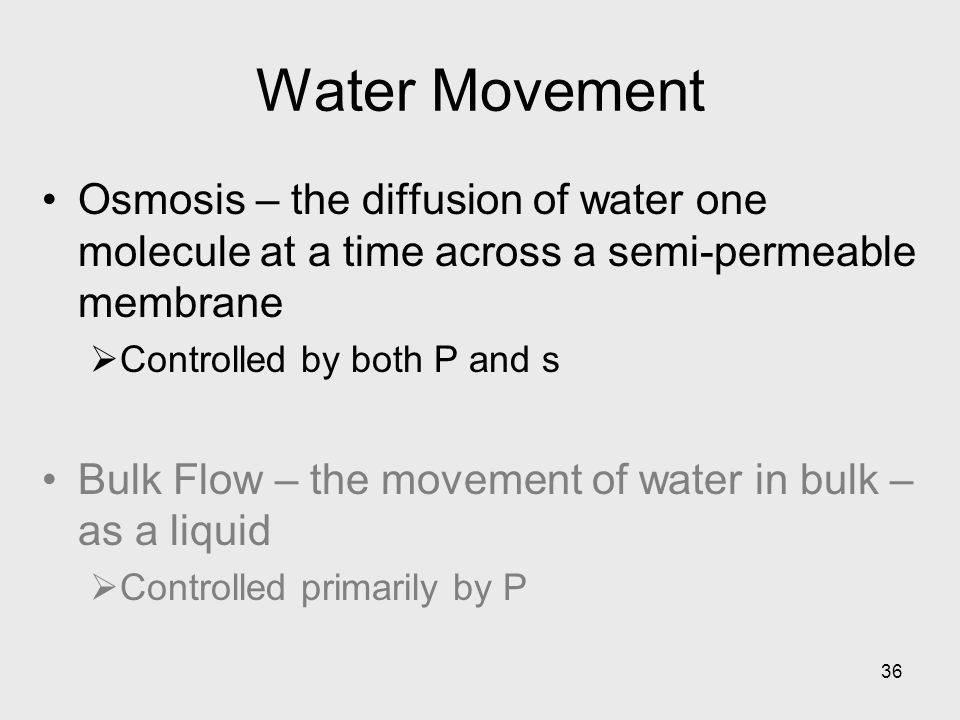 36 Water Movement Osmosis – the diffusion of water one molecule at a time across a semi-permeable membrane  Controlled by both P and s Bulk Flow – th