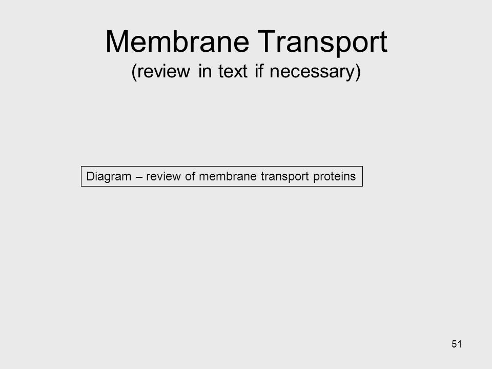 51 Diagram – review of membrane transport proteins Membrane Transport (review in text if necessary)