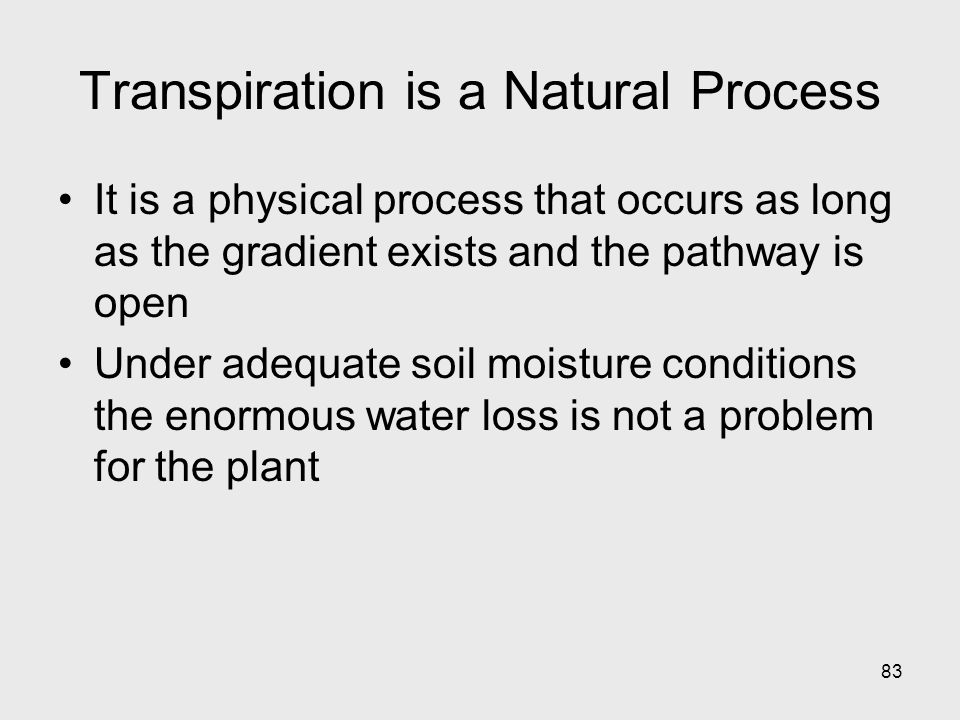 83 Transpiration is a Natural Process It is a physical process that occurs as long as the gradient exists and the pathway is open Under adequate soil