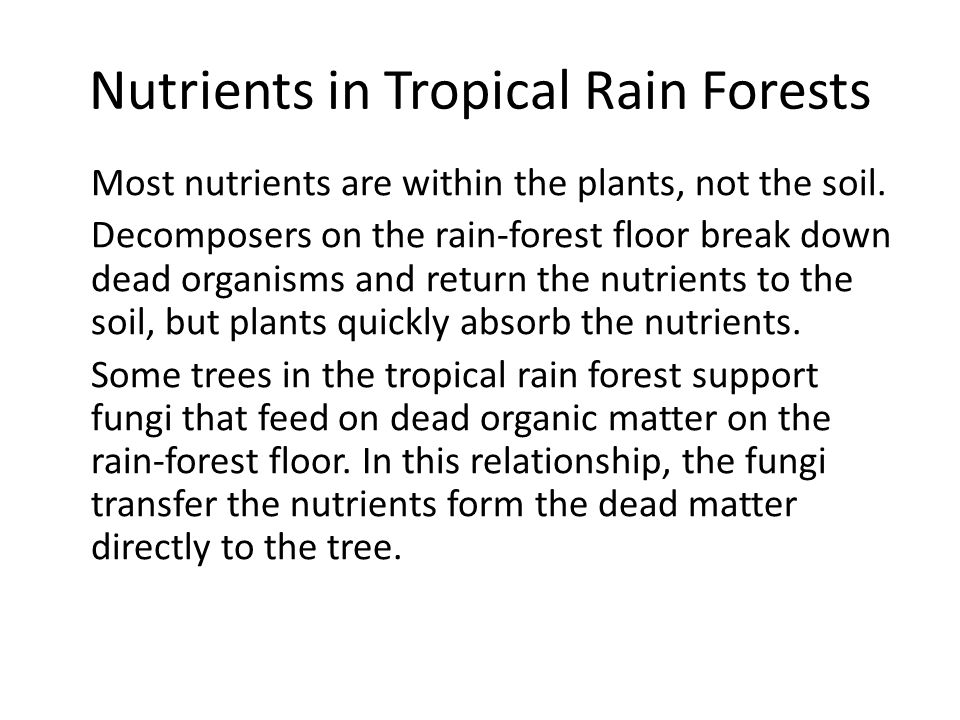 Nutrients in Tropical Rain Forests Most nutrients are within the plants, not the soil. Decomposers on the rain-forest floor break down dead organisms