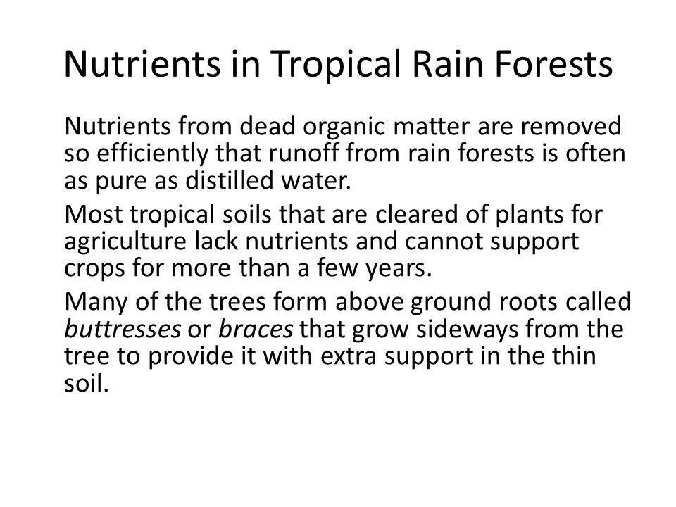 Nutrients in Tropical Rain Forests Nutrients from dead organic matter are removed so efficiently that runoff from rain forests is often as pure as dis