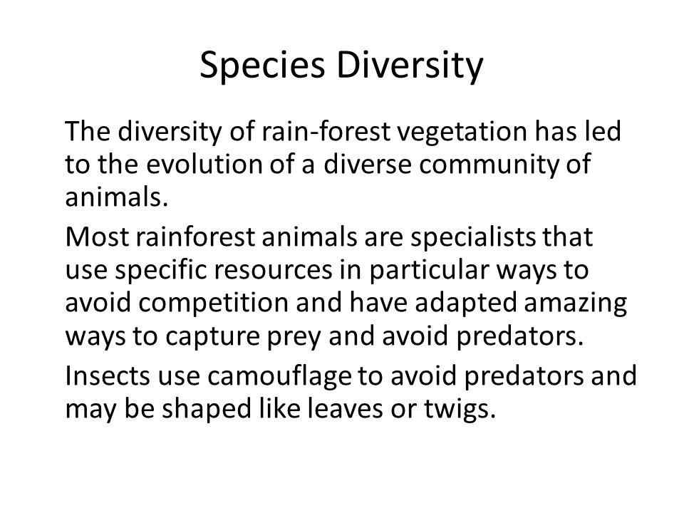Species Diversity The diversity of rain-forest vegetation has led to the evolution of a diverse community of animals. Most rainforest animals are spec