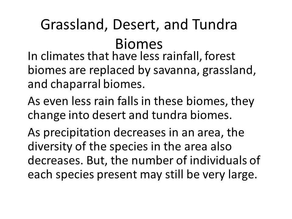 Grassland, Desert, and Tundra Biomes In climates that have less rainfall, forest biomes are replaced by savanna, grassland, and chaparral biomes. As e