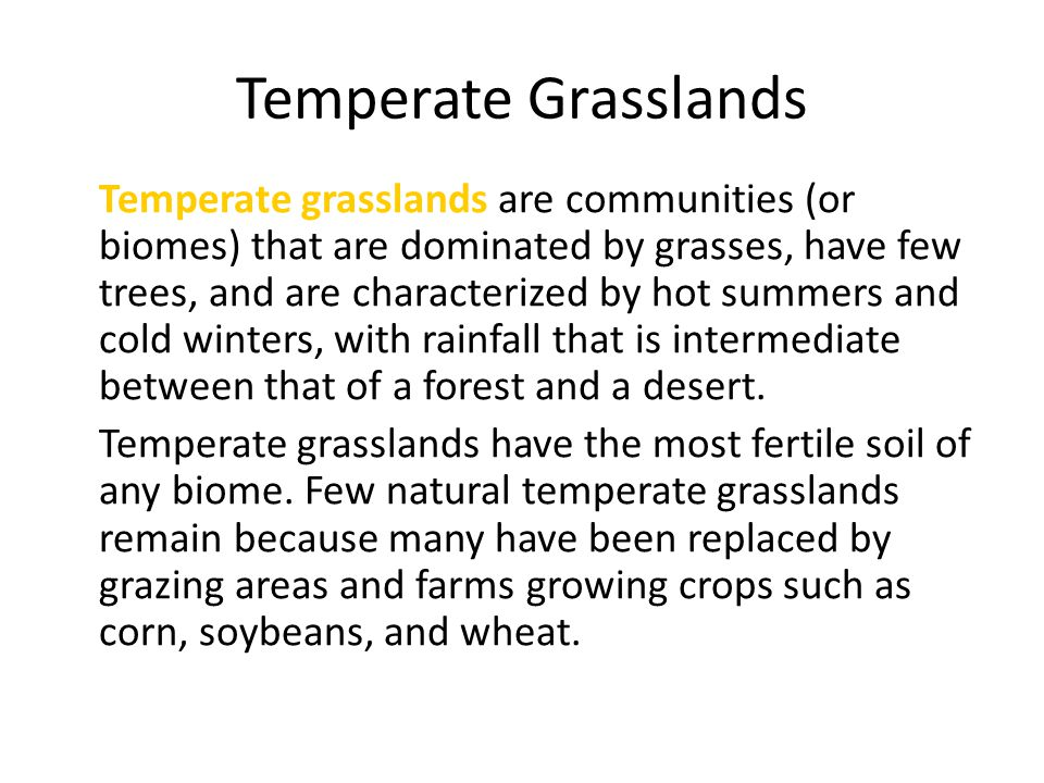 Temperate Grasslands Temperate grasslands are communities (or biomes) that are dominated by grasses, have few trees, and are characterized by hot summ