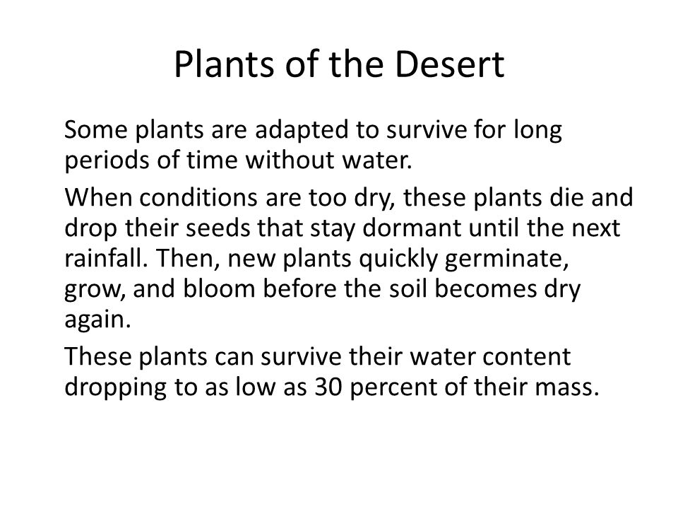 Plants of the Desert Some plants are adapted to survive for long periods of time without water. When conditions are too dry, these plants die and drop