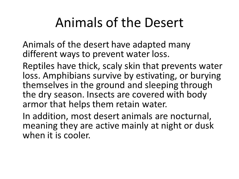 Animals of the Desert Animals of the desert have adapted many different ways to prevent water loss. Reptiles have thick, scaly skin that prevents wate