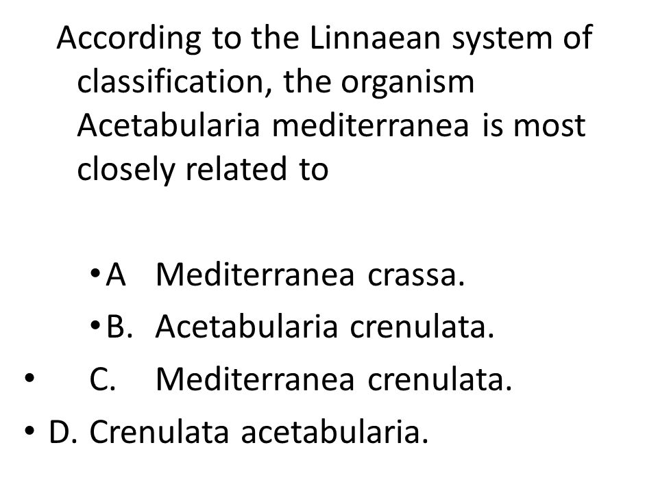 According to the Linnaean system of classification, the organism Acetabularia mediterranea is most closely related to AMediterranea crassa.