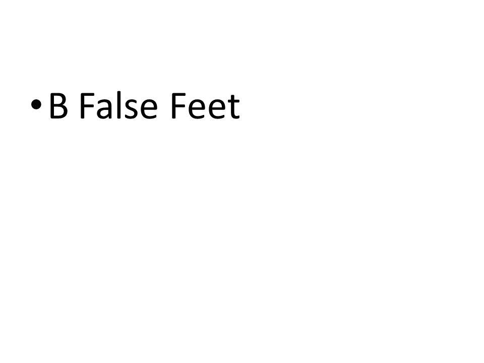 BFalse Feet