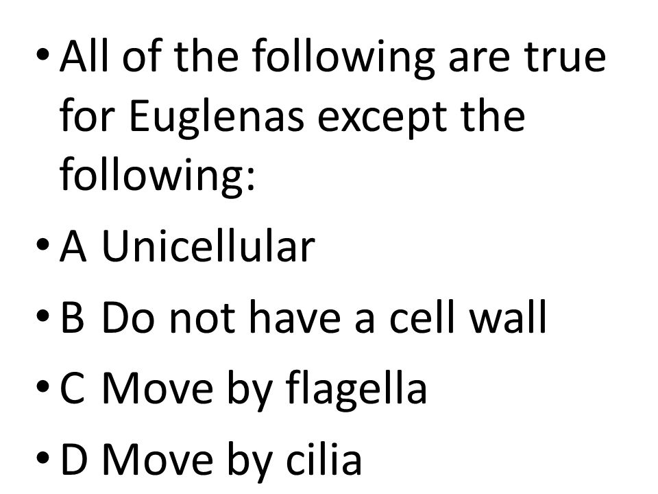 All of the following are true for Euglenas except the following: AUnicellular BDo not have a cell wall CMove by flagella DMove by cilia