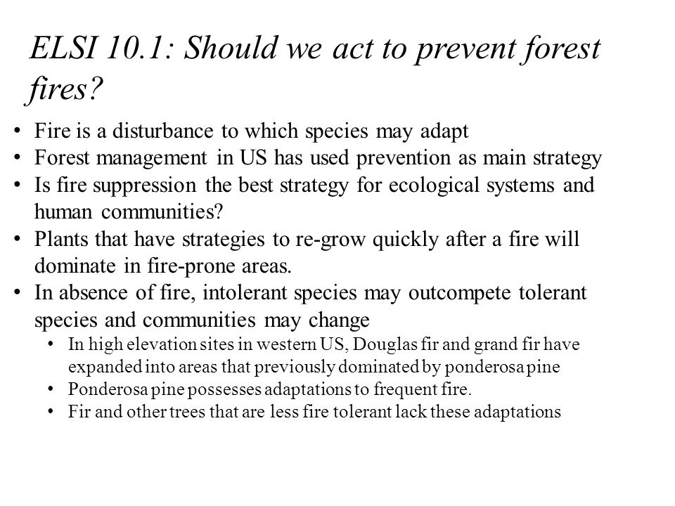 ELSI 10.1: Should we act to prevent forest fires.