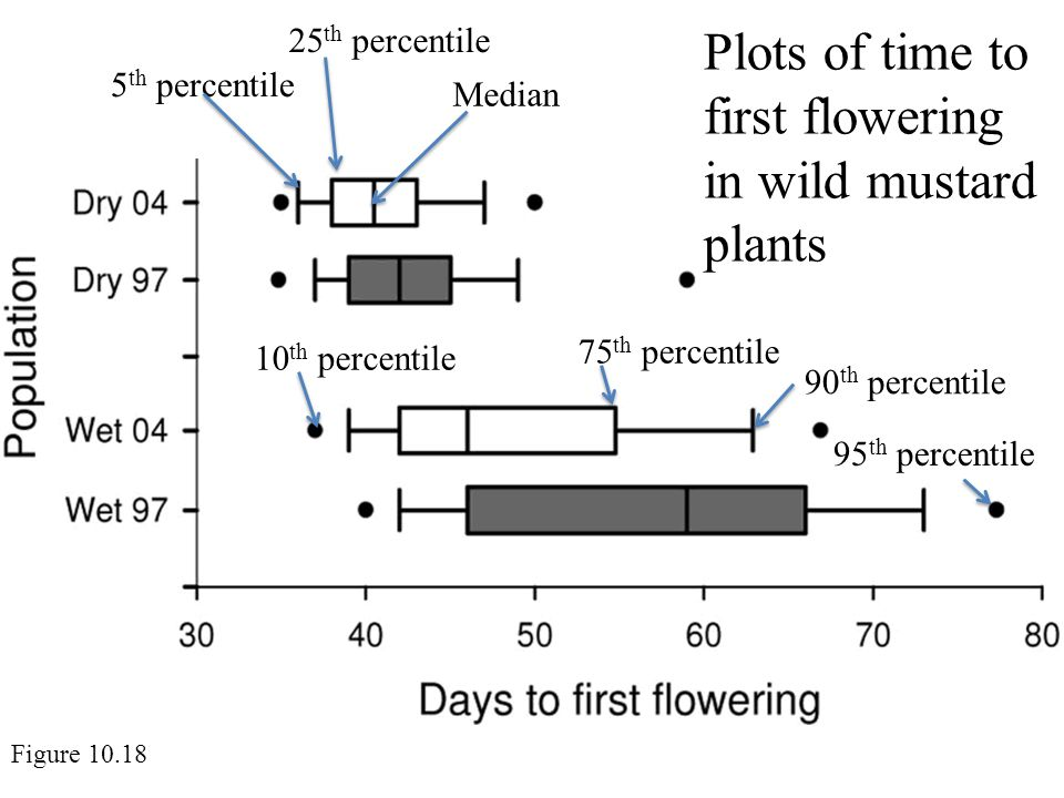 Plots of time to first flowering in wild mustard plants Figure 10.18 5 th percentile Median 90 th percentile 10 th percentile 75 th percentile 95 th percentile 25 th percentile