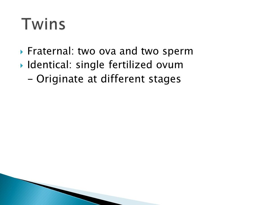  Fraternal: two ova and two sperm  Identical: single fertilized ovum - Originate at different stages