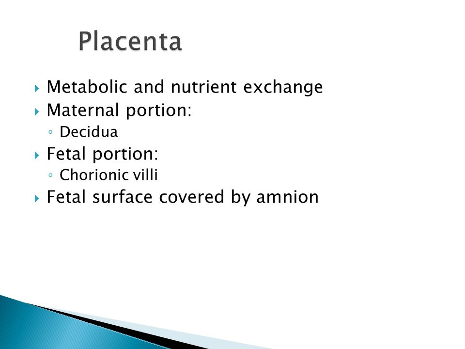  Metabolic and nutrient exchange  Maternal portion: ◦ Decidua  Fetal portion: ◦ Chorionic villi  Fetal surface covered by amnion