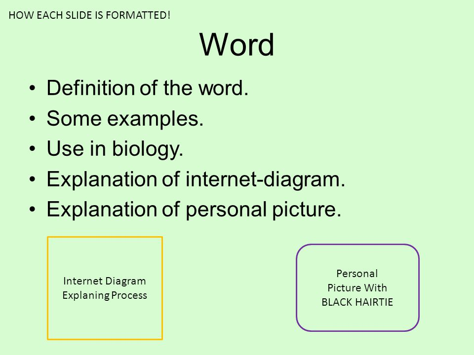 Word Definition of the word. Some examples. Use in biology. Explanation of internet-diagram. Explanation of personal picture. Internet Diagram Explani