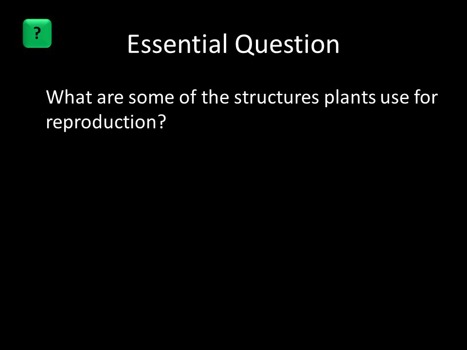 Essential Question What are some of the structures plants use for reproduction? ?