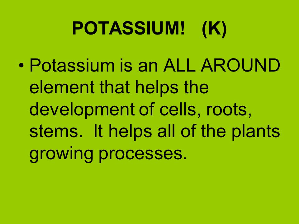 PHOSPHORUS! Feeds the ROOTS! The underground part of the plant! Also helps to promote BLOOMS!