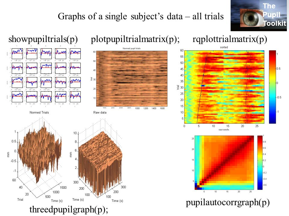 Graphs of a single subject's data – all trials showpupiltrials(p) plotpupiltrialmatrix(p); threedpupilgraph(p); rqplottrialmatrix(p) pupilautocorrgraph(p) The Pupil Toolkit