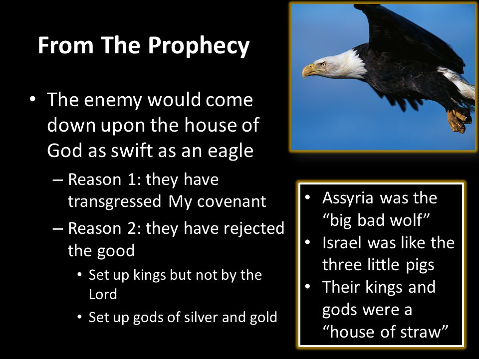 From The Prophecy The enemy would come down upon the house of God as swift as an eagle – Reason 1: they have transgressed My covenant – Reason 2: they