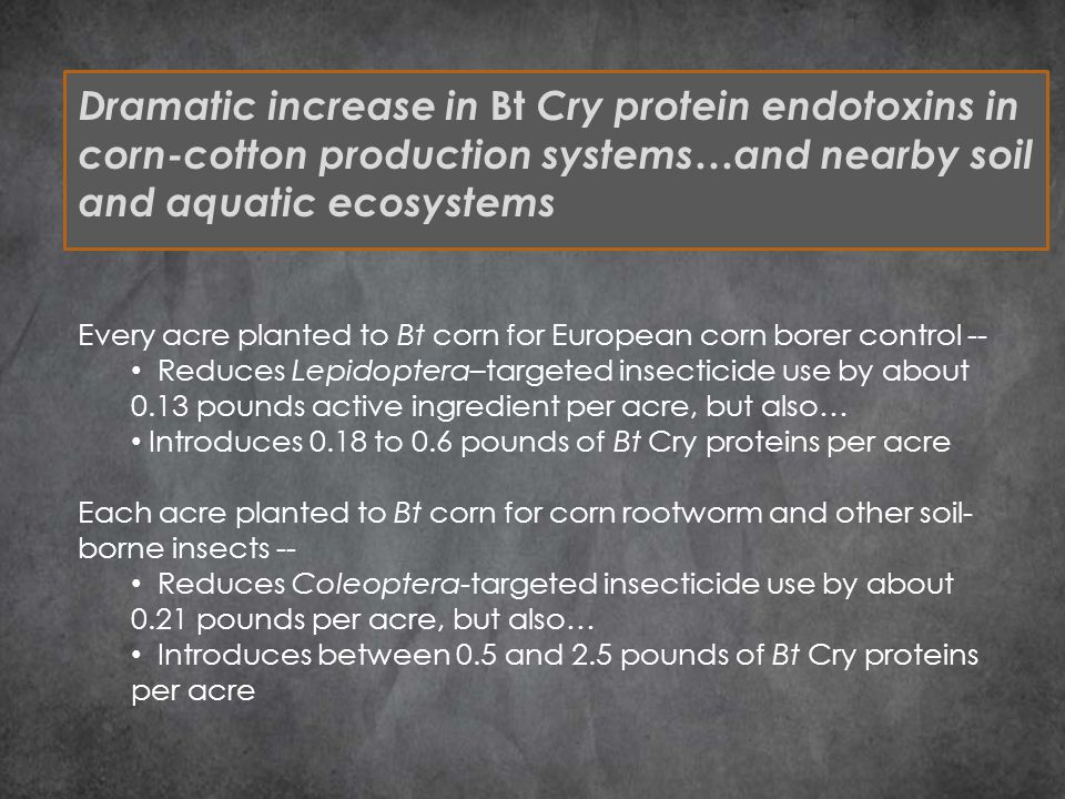 Dramatic increase in Bt Cry protein endotoxins in corn-cotton production systems…and nearby soil and aquatic ecosystems Every acre planted to Bt corn for European corn borer control -- Reduces Lepidoptera–targeted insecticide use by about 0.13 pounds active ingredient per acre, but also… Introduces 0.18 to 0.6 pounds of Bt Cry proteins per acre Each acre planted to Bt corn for corn rootworm and other soil- borne insects -- Reduces Coleoptera-targeted insecticide use by about 0.21 pounds per acre, but also… Introduces between 0.5 and 2.5 pounds of Bt Cry proteins per acre