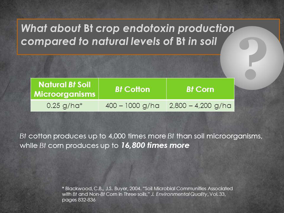What about Bt crop endotoxin production compared to natural levels of Bt in soil .