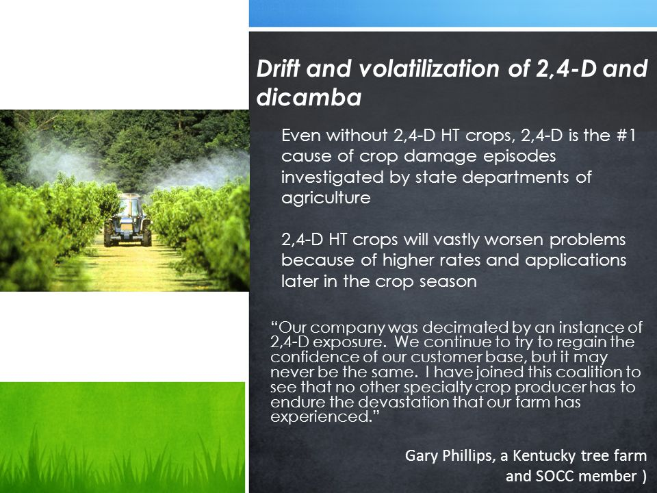Drift and volatilization of 2,4-D and dicamba Our company was decimated by an instance of 2,4-D exposure.