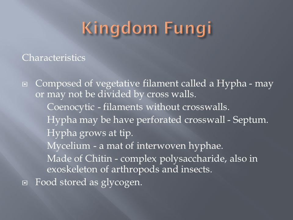 Characteristics  Composed of vegetative filament called a Hypha - may or may not be divided by cross walls. Coenocytic - filaments without crosswalls