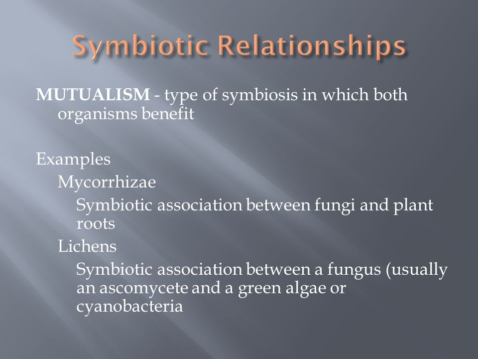 MUTUALISM - type of symbiosis in which both organisms benefit Examples Mycorrhizae Symbiotic association between fungi and plant roots Lichens Symbiot