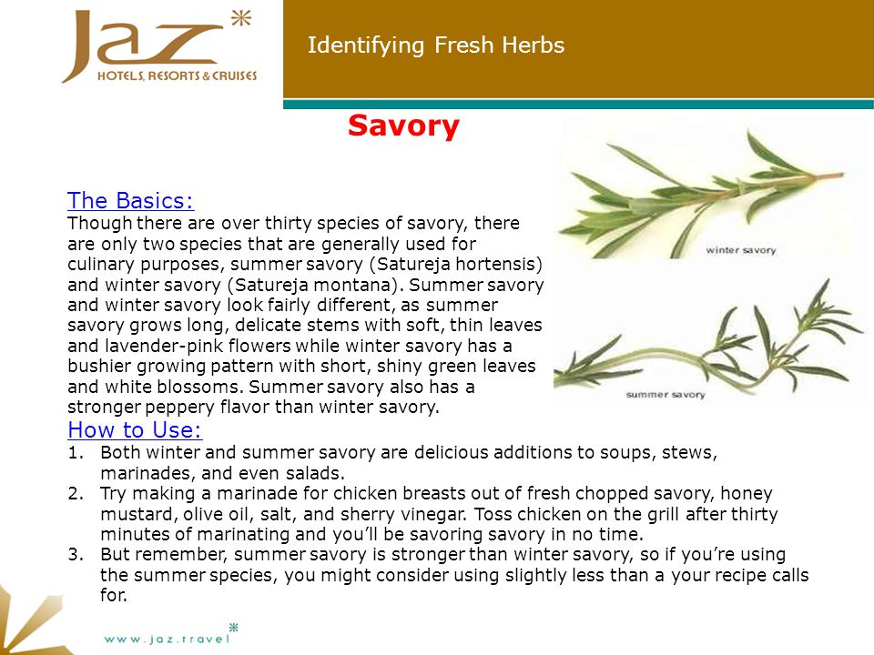 Identifying Fresh Herbs Savory How to Use: 1.Both winter and summer savory are delicious additions to soups, stews, marinades, and even salads.