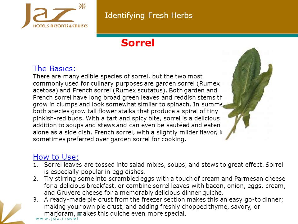 Identifying Fresh Herbs Sorrel How to Use: 1.Sorrel leaves are tossed into salad mixes, soups, and stews to great effect.