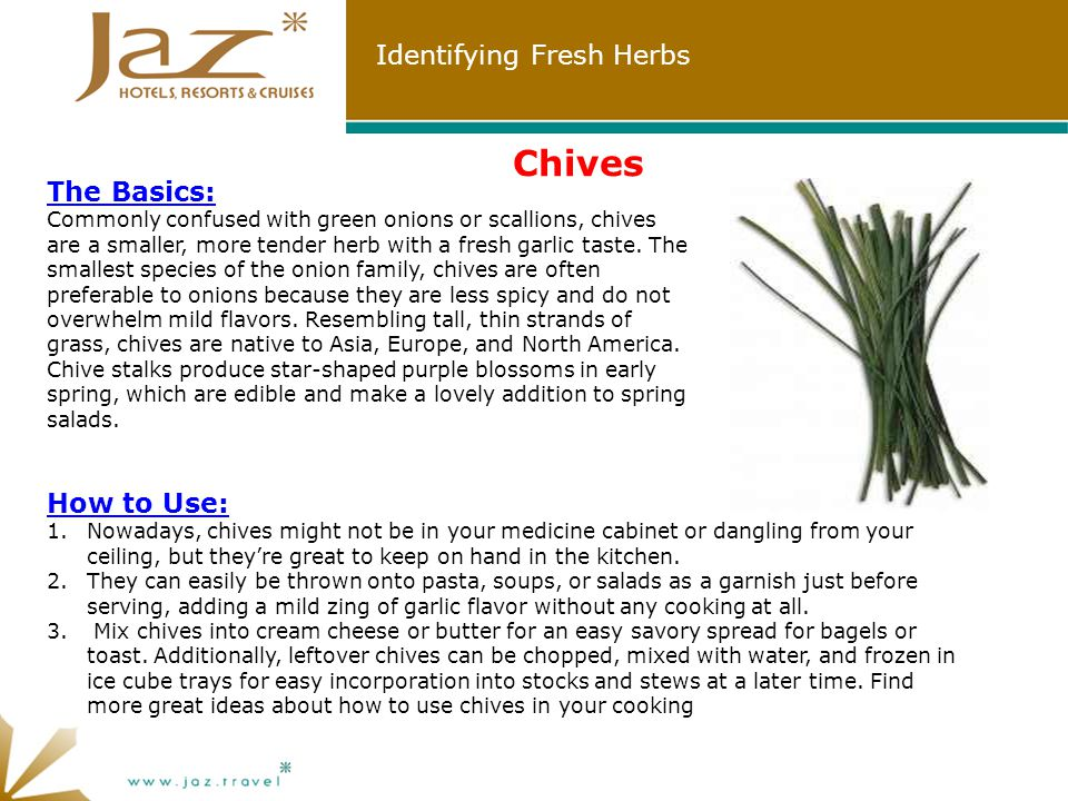 Identifying Fresh Herbs Chives How to Use: 1.Nowadays, chives might not be in your medicine cabinet or dangling from your ceiling, but they're great to keep on hand in the kitchen.