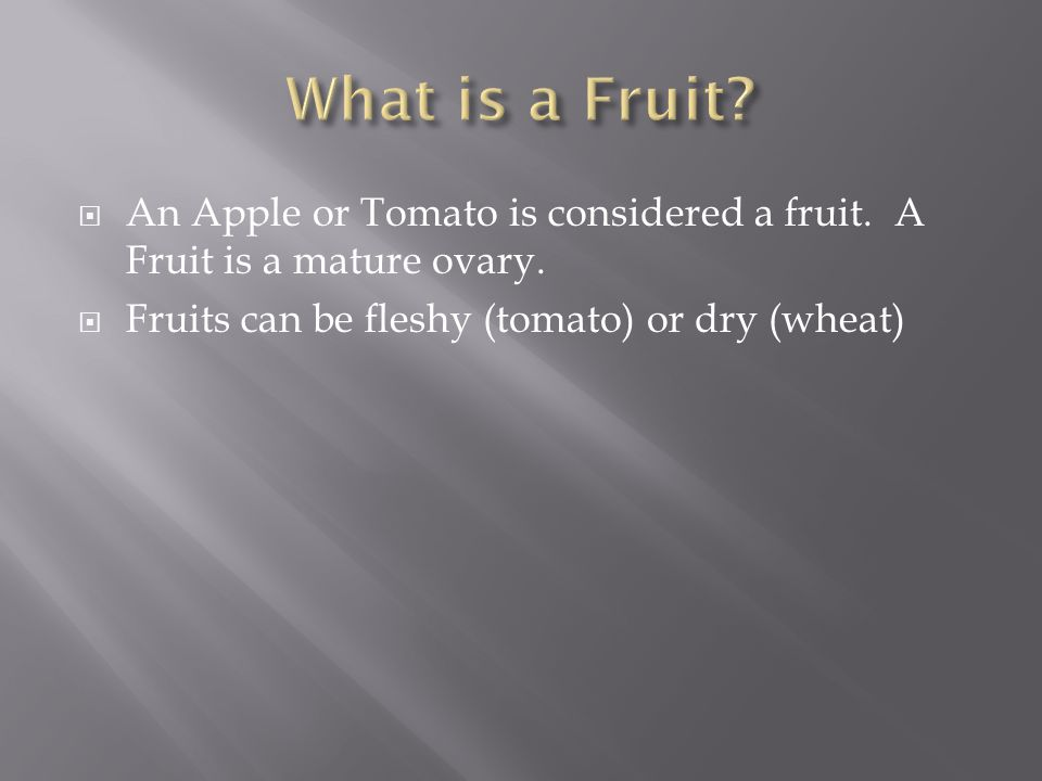  An Apple or Tomato is considered a fruit. A Fruit is a mature ovary.  Fruits can be fleshy (tomato) or dry (wheat)