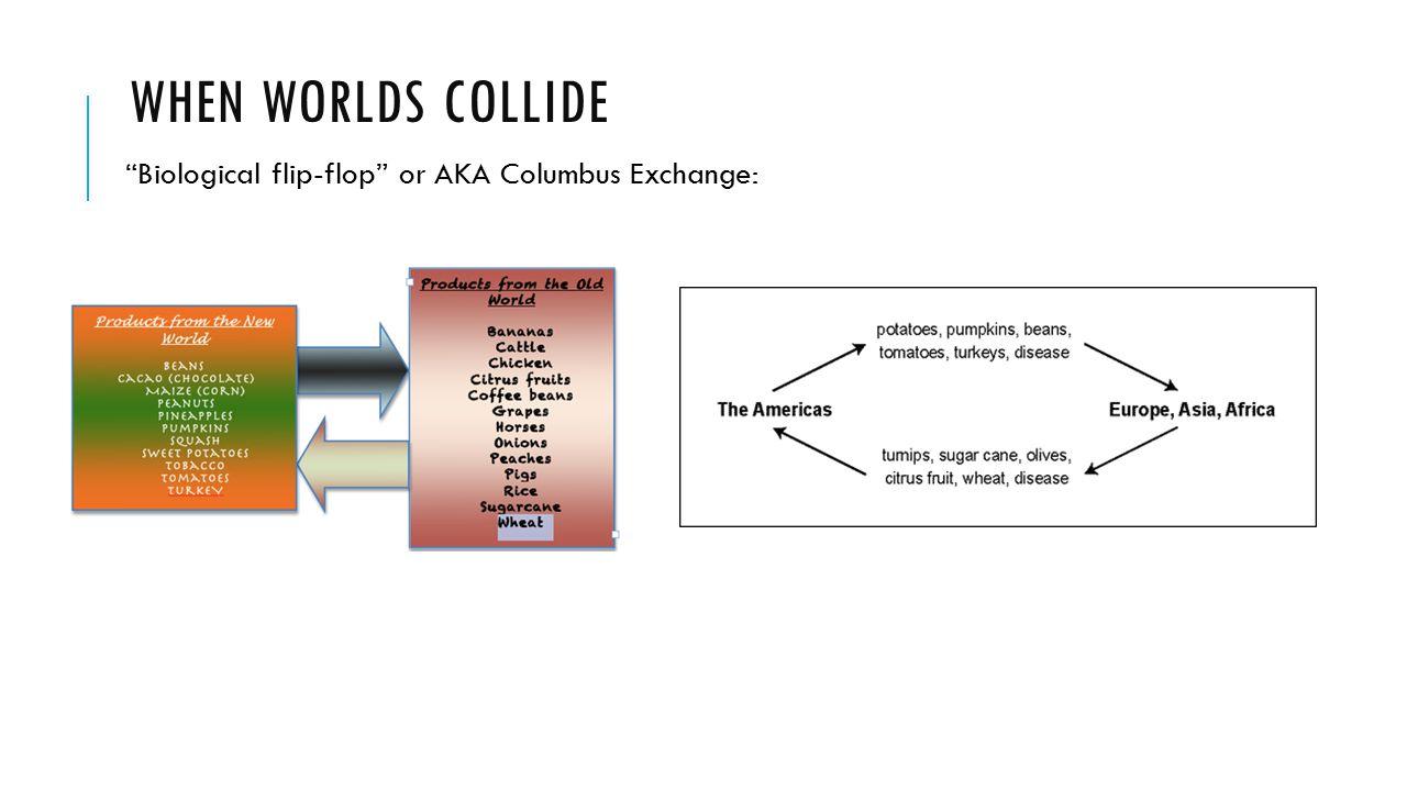 Biological flip-flop or AKA Columbus Exchange: