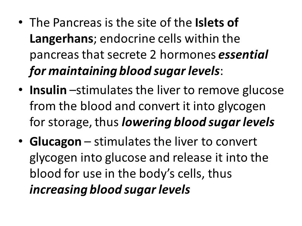 The Pancreas is the site of the Islets of Langerhans; endocrine cells within the pancreas that secrete 2 hormones essential for maintaining blood sugar levels: Insulin –stimulates the liver to remove glucose from the blood and convert it into glycogen for storage, thus lowering blood sugar levels Glucagon – stimulates the liver to convert glycogen into glucose and release it into the blood for use in the body's cells, thus increasing blood sugar levels